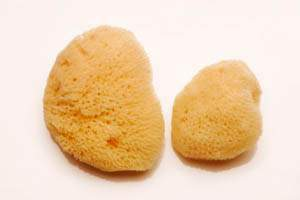 natural alternative to menstrual pads and tampons - small sponges